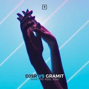 DJSR VS GRAMIT - Want To Feel You